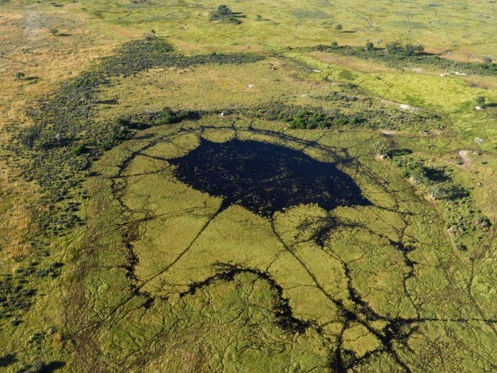 Botswana Okavango 2017