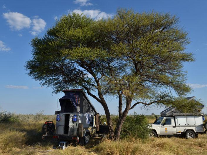 Botswana Kalahari 2017