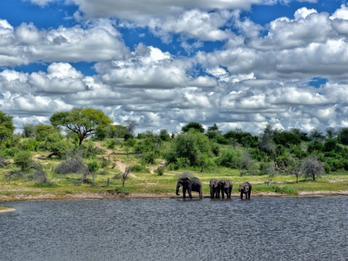 Botswana Makgadikgadi 2016