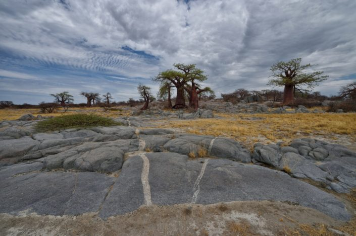 Botswana Kubu Island