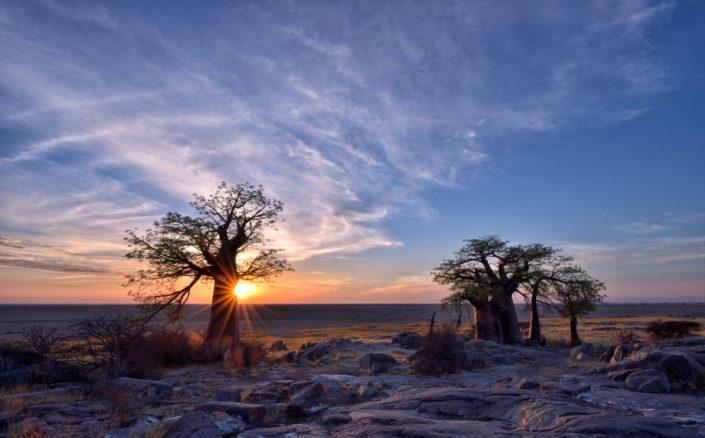 Makgadikgadi Salzpfannen Kubu Island sunrise