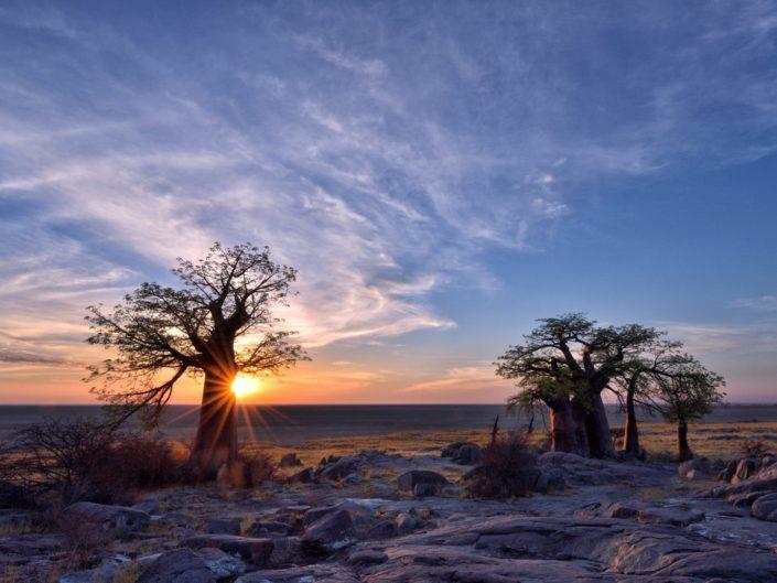 Botswana Makgadikgadi 2018