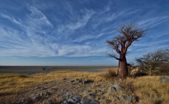 Makgadikgadi Salzpfannen Kubu Island