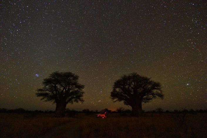 Sternenhimmel über der Baines Baobab Campsite BO2