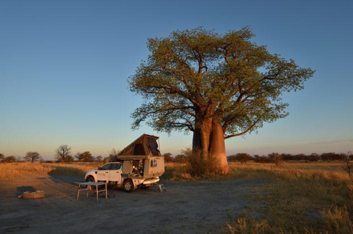 Campsite BO2 bei den Baines Baobab