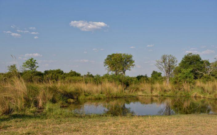Moremi Okavango Botswana Paradise Pools