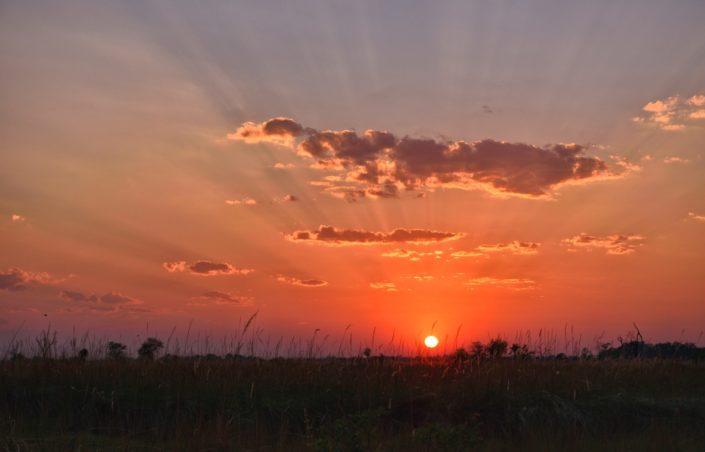Moremi Okavango Botswana Xakanaxa