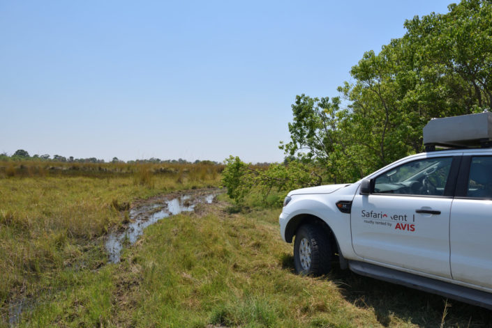 Moremi Okavango Botswana Khwai Region AVIS Ford Ranger