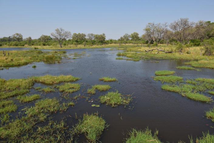 Moremi Okavango Botswana Khwai Bridge