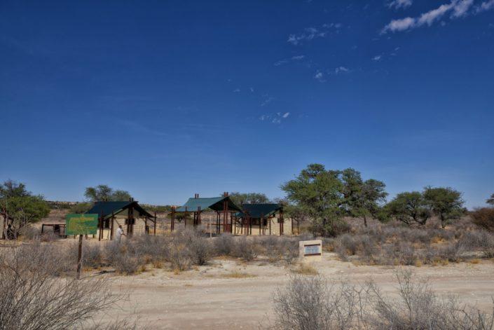 Kgalagadi Transfrontier Park Reisebericht