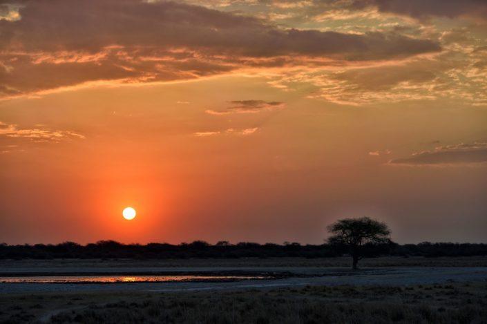 Sonnenuntergang am Wasserloch des Khama Rhino Sanctuary