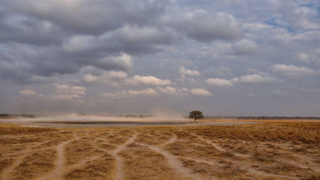 Sandsturm am Wasserloch mit Wolken am Himmel