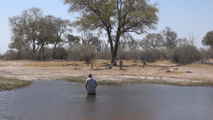 Herbert durchwatet Wasserdurchfahrt