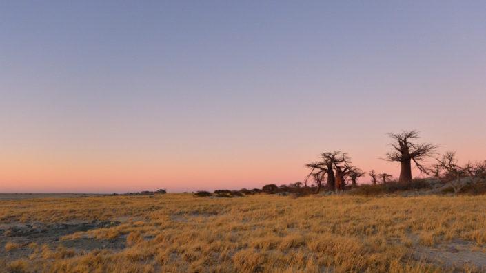 Blick auf Kubu Island vor Sonnenaufgang