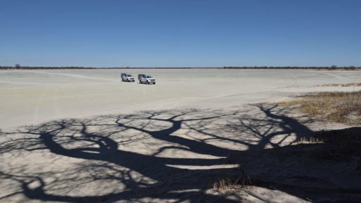 Riesiger Schatten des Baobab mit zwei kleinen Autos