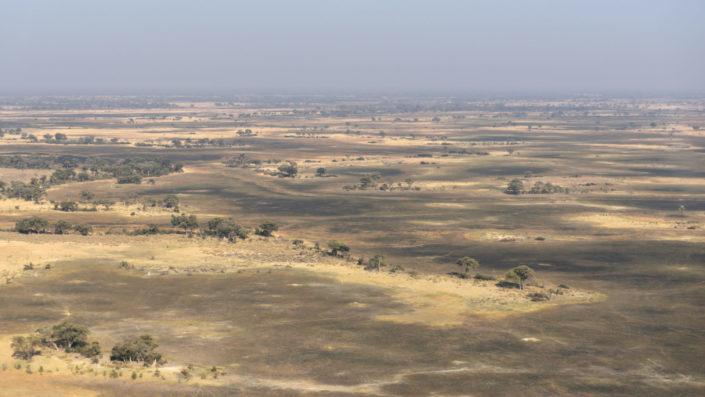 Okavango Delta ohne Wasser