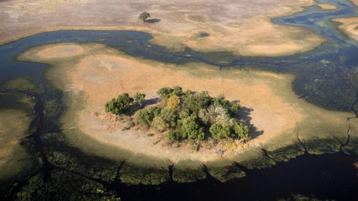 Grüne Insel im Okavango Delta