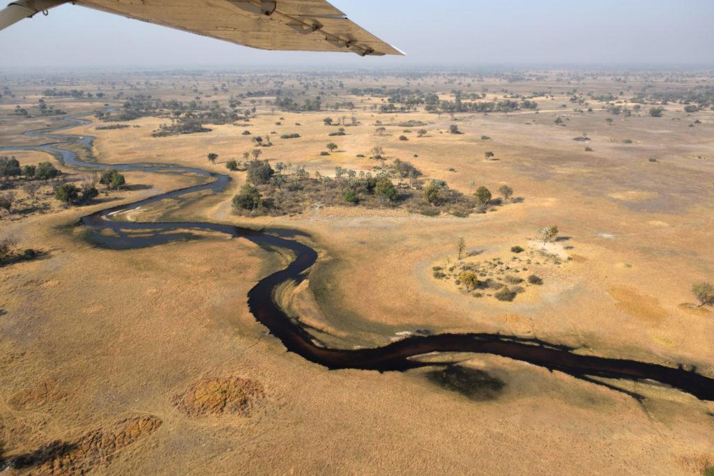 Goldgelbes Gras auf beiden Seiten des dunkelblauen Flusses