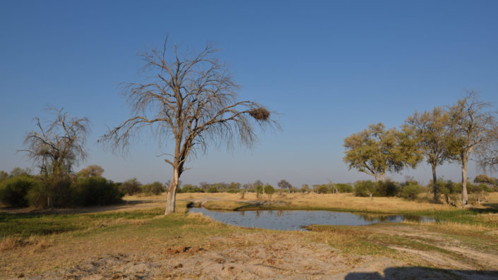 Eine der Furten auf dem Weg zur Magotho Campsite