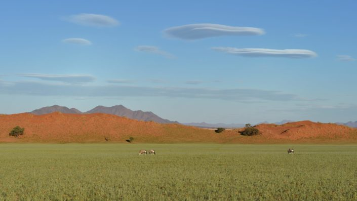 Oryx Plain in NamibRand